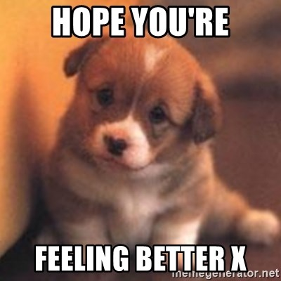 Hope Youre Feeling Better X Cute Puppy Meme Generator