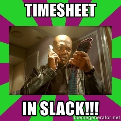 SNAKES ON A PLANE - Timesheet in slack!!!