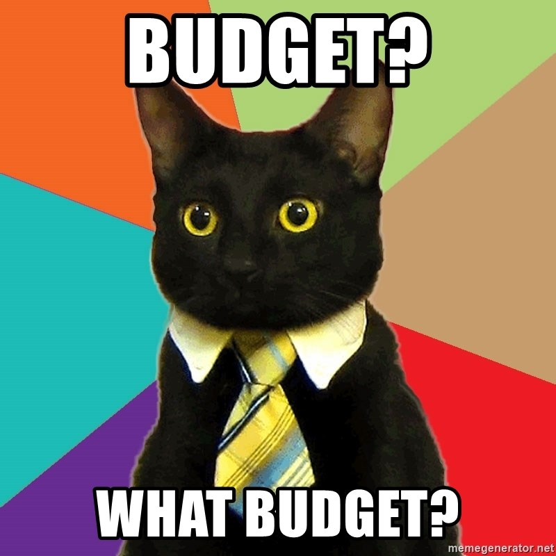 Budget what budget business cat meme generator what budget business cat meme generator voltagebd Gallery
