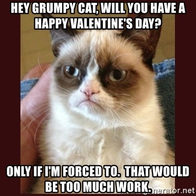 hey grumpy cat will you have a happy valentines day only if im