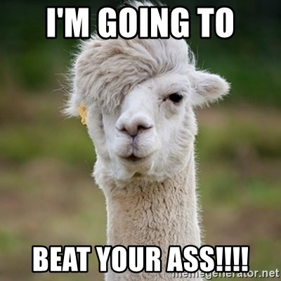 Hipster Llama - I'm going to  Beat your ass!!!!