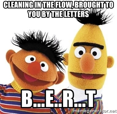 Cleaning In The Flow Brought To You By The Letters B E R