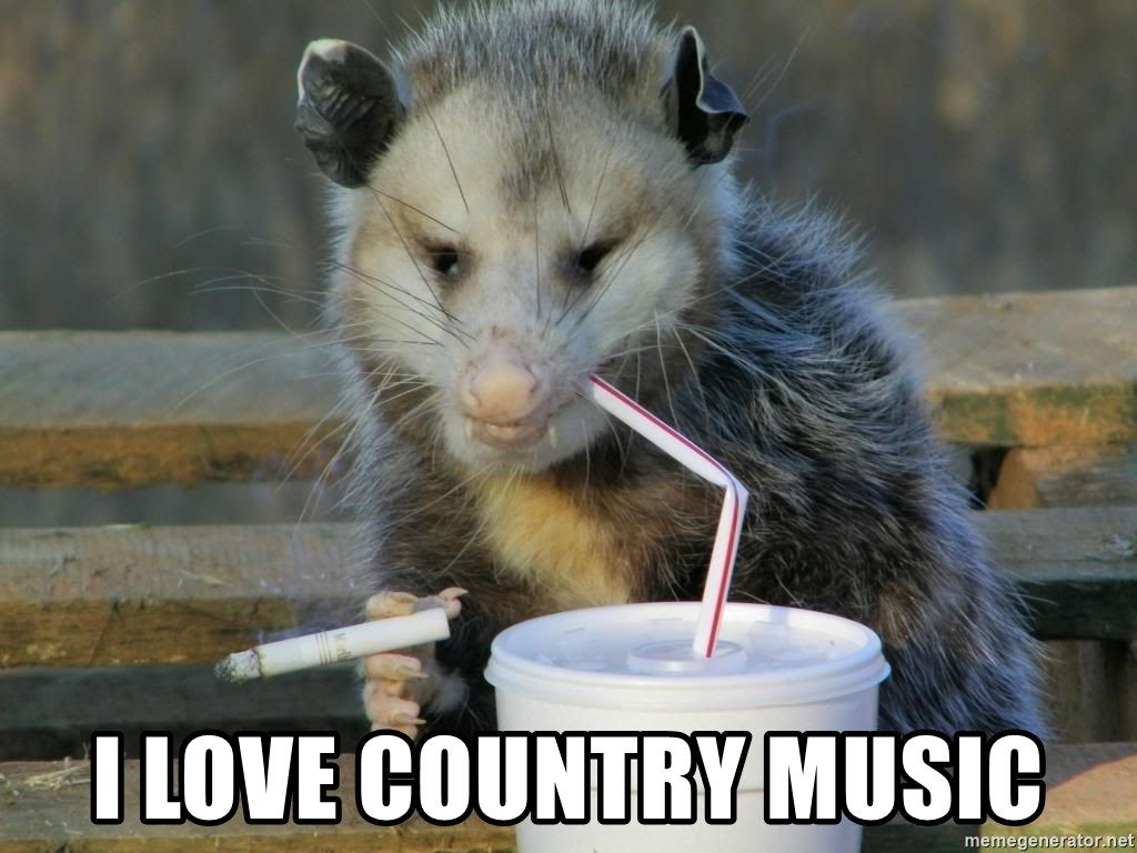 Awesome Possum -  i love country music