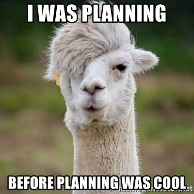 Hipster Llama - I was planning  Before planning was cool