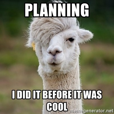 Hipster Llama - Planning I did it before it was cool