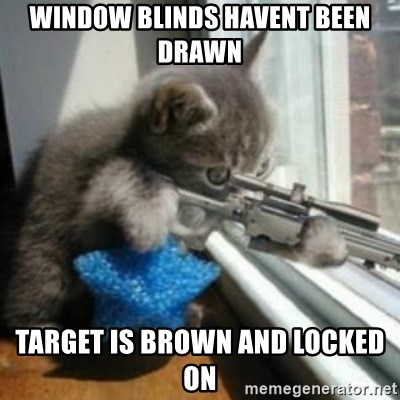 window blinds havent been drawn target is brown and locked on window blinds havent been drawn target is brown and locked on
