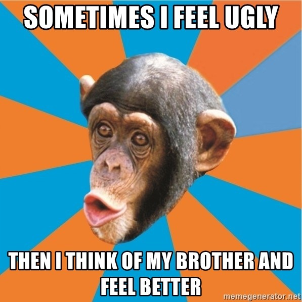 Stupid Monkey - Sometimes I feel ugly Then I think of my brother and feel better