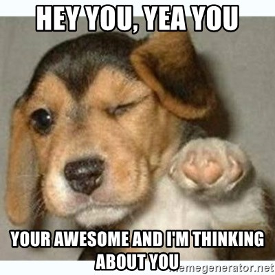 fist bump puppy - HEY YOU, YEA YOU YOUR AWESOME AND I'M THINKING ABOUT YOU