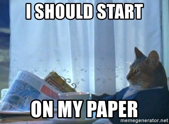 newspaper cat realization - I should start on my paper
