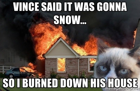 grumpy cat 8 - Vince said it was gonna snow... so i burned down his house