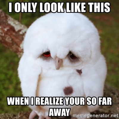 Sad Owl Baby - I only look like this When i realize your so far away