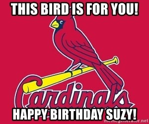st. louis Cardinals - This bird is for you! Happy Birthday Suzy!