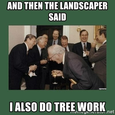 Image: and then the landscaper said I also do tree work - laughing ...