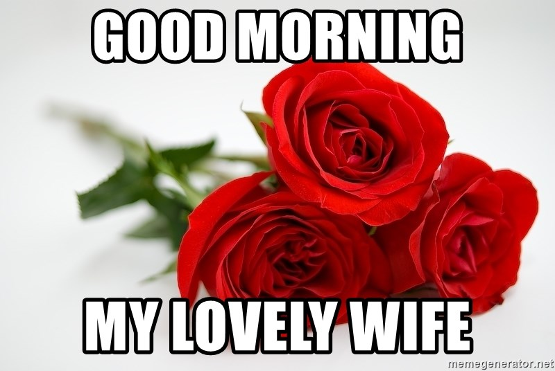 Good Morning My Lovely Wife 3 Roses Meme Generator