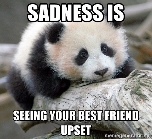 60192026 sadness is seeing your best friend upset sad panda meme generator