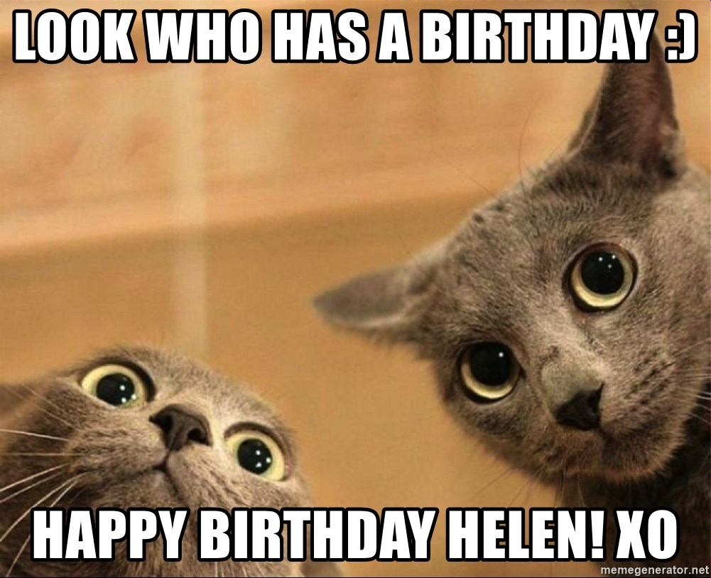 Look who has a birthday :) Happy Birthday Helen! XO - Curious Cats ...