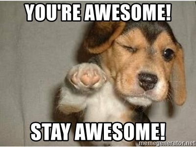 60531550 you're awesome! stay awesome! funny winking dog meme generator