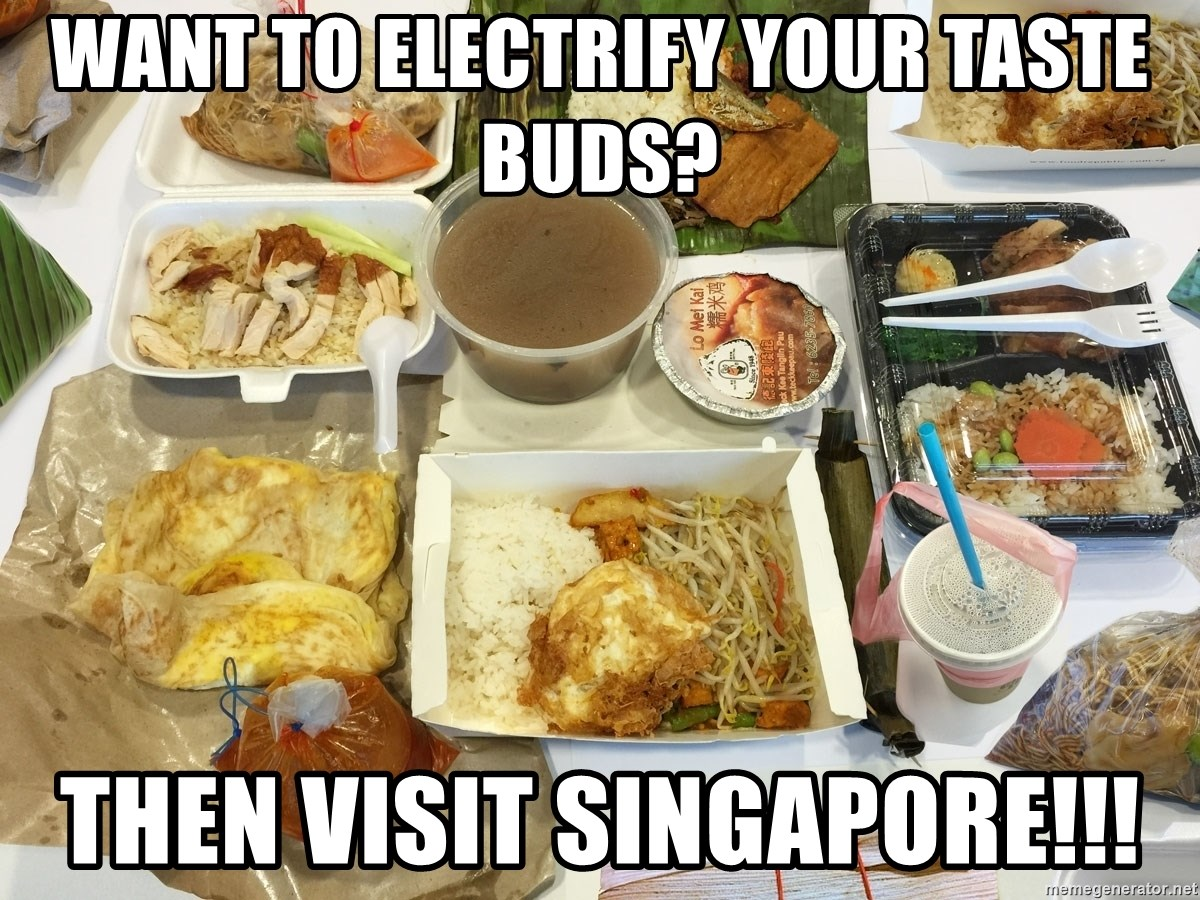 Takeaway - Want to electrify your taste buds? Then Visit Singapore!!!