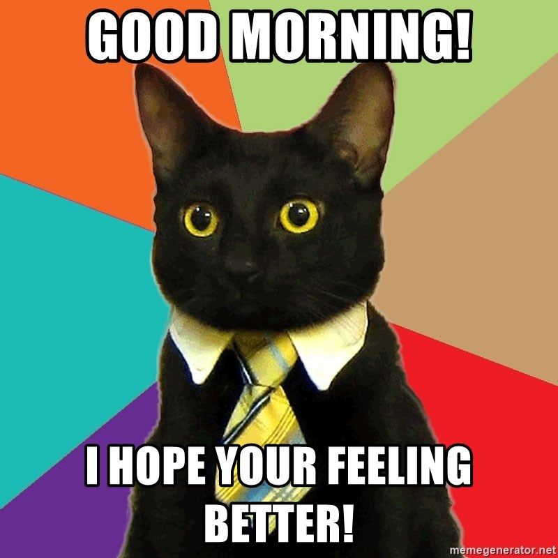 Good Morning I Hope Your Feeling Better Business Cat Meme