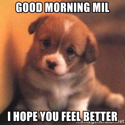 good morning mil i hope you feel better cute puppy meme generator