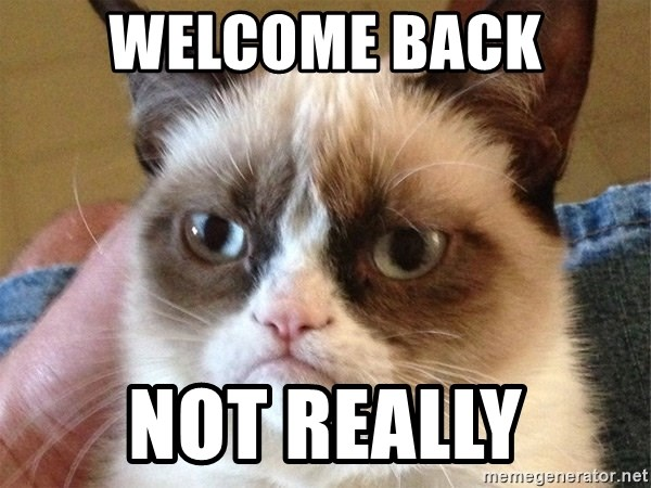 Angry Cat Meme - Welcome back Not really