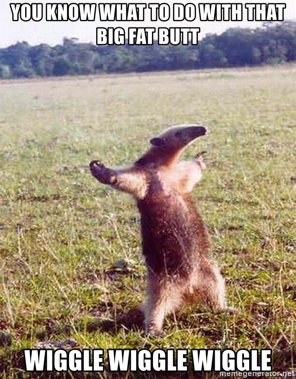 you know what to do with that big fat butt wiggle wiggle wiggle - Anteater  | Meme Generator