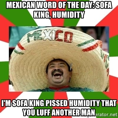Mexican Word Of The Day Sofa King Humidity I M Sofa King Pissed
