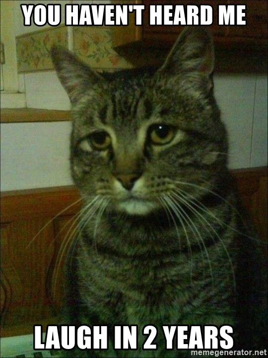 Depressed cat 2 - You haven't heard me laugh in 2 years