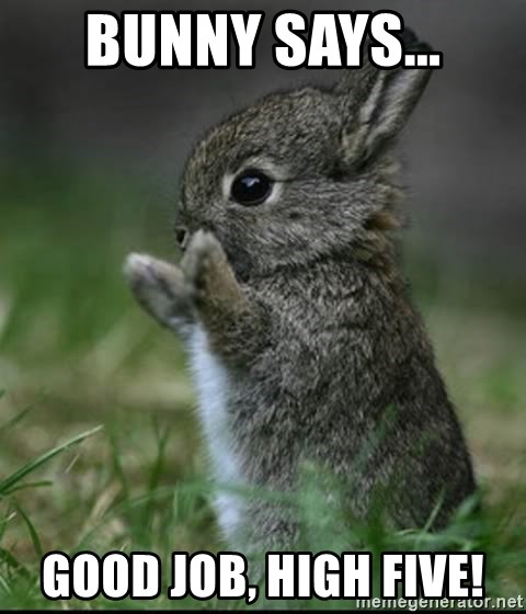 bunny says... good job, high five! - Cute Bunny | Meme ...