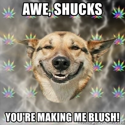 61508851 awe, shucks you're making me blush! stoner dog meme generator