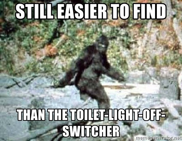 Bigfoot Frolicking - Still easier to find than the toilet-light-off-switcher