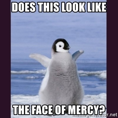 Cute Penguin - Does this LOOK like The face of mercy?