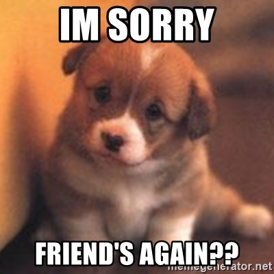 Im Sorry Friend's Again?? - cute puppy | Meme Generator