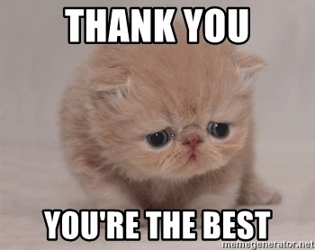 Super Sad Cat - THANK YOU YOU'RE THE BEST