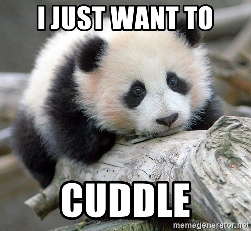 I Just Want To Cuddle Sad Panda Meme Generator