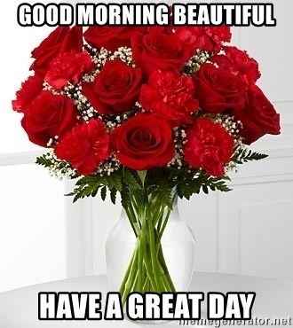 Good Morning Beautiful Have A Great Day Flowers Vday Meme Generator
