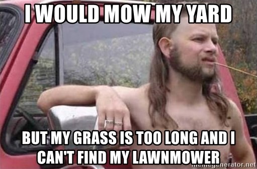 Mow My Yard But Gr Is Too Long
