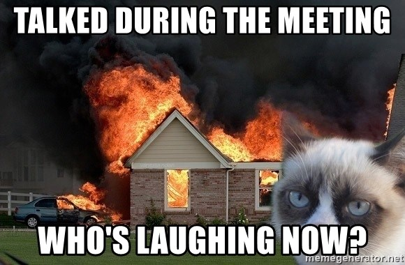 grumpy cat 8 - Talked during the meeting Who's laughing now?