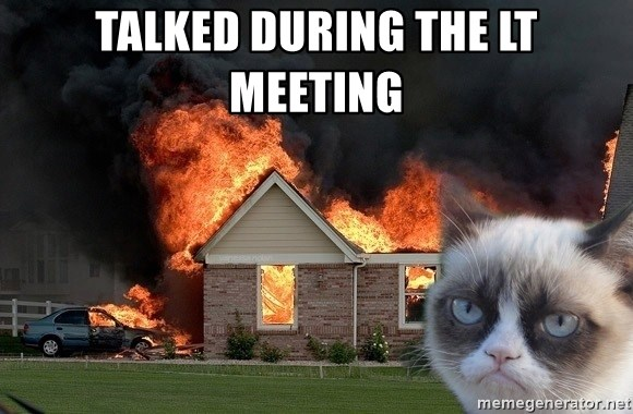 grumpy cat 8 - Talked during the LT Meeting