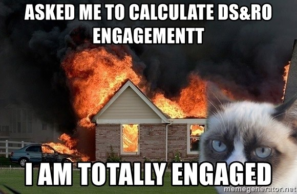 grumpy cat 8 - Asked me to calculate DS&RO engagementt I am TOTALLY engaged