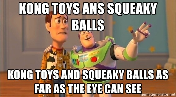 buzz as far as the eye can see - Kong toys ans squeaky balls Kong toys and squeaky balls as far as the eye can see