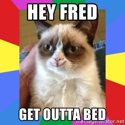 Grumpy Cat Smiling - Hey Fred Get outta bed