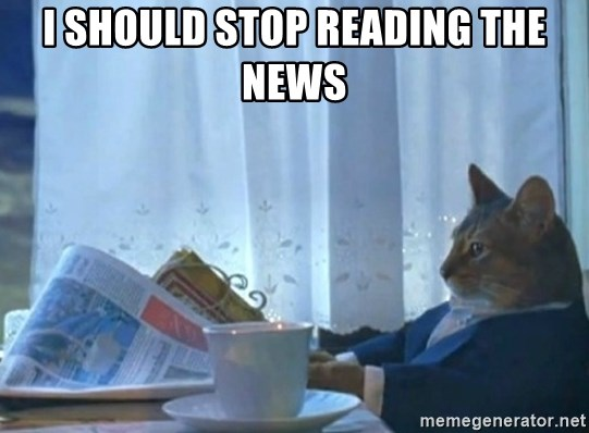 newspaper cat realization - I SHOULD STOP READING THE NEWS