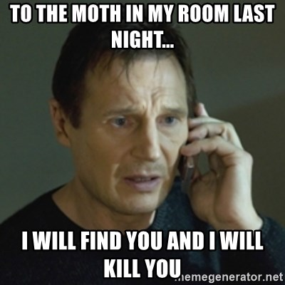 To the moth in my room last night    I will find you and i