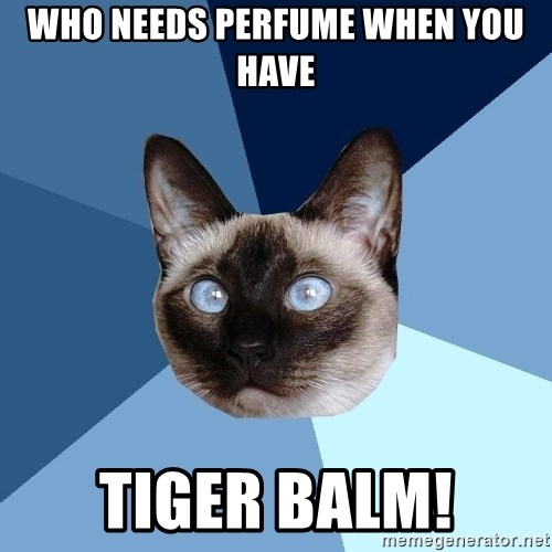 Who Needs Perfume When You Have Tiger Balm Chronic Illness Cat