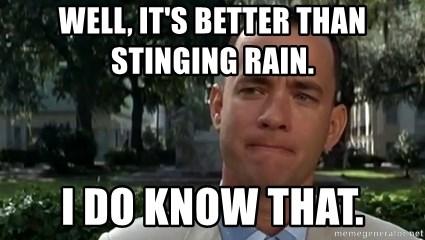 Content Forrest Gump - Well, it's better than stinging rain.  I do know that.