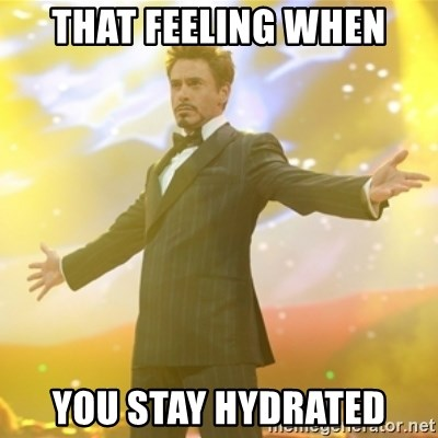 That feeling when You stay hydrated - Tony Stark success ...