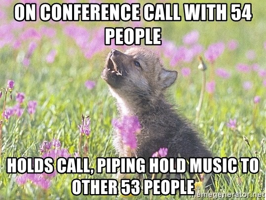 Baby Insanity Wolf - on conference call with 54 people holds call, piping hold music to other 53 people