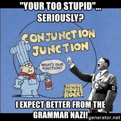 "Grammar Nazi - ""Your too stupid""... Seriously? I expect better from the Grammar Nazi!"