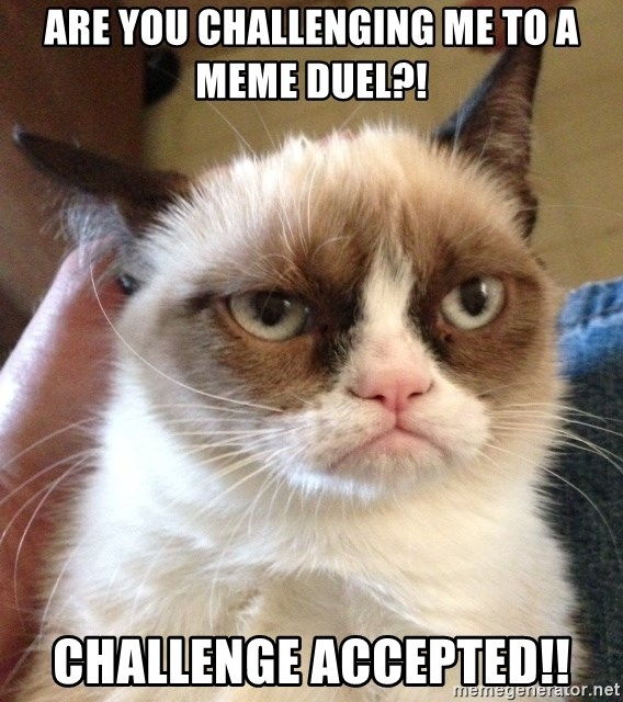 Are You Challenging Me To A Meme Duel Challenge Accepted Grumpy Cat 2 Meme Generator Loser walks the plank⛵️ #boltandkeel #tbt». are you challenging me to a meme duel